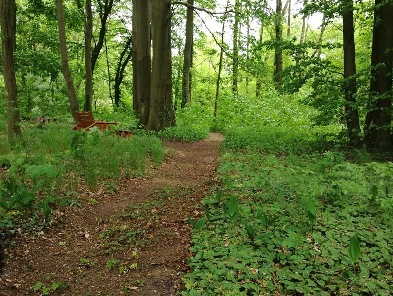 Salon im Gutshaus Friedenfelde - Willkommen in unserem Vollkorncafé